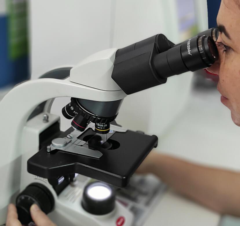microscopio-servicios-gatcan