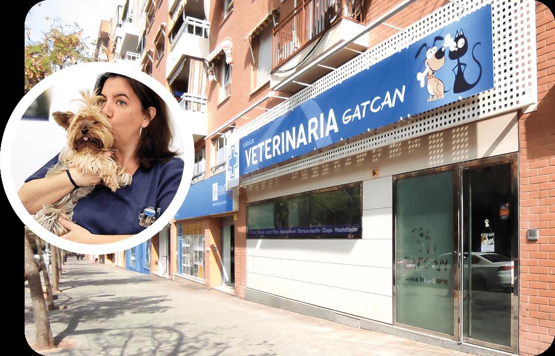 veterinaria-gatcan